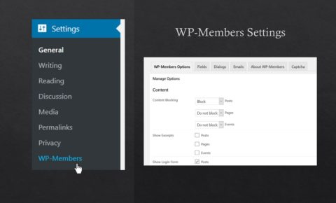 screenshot of WP-Members plugin options