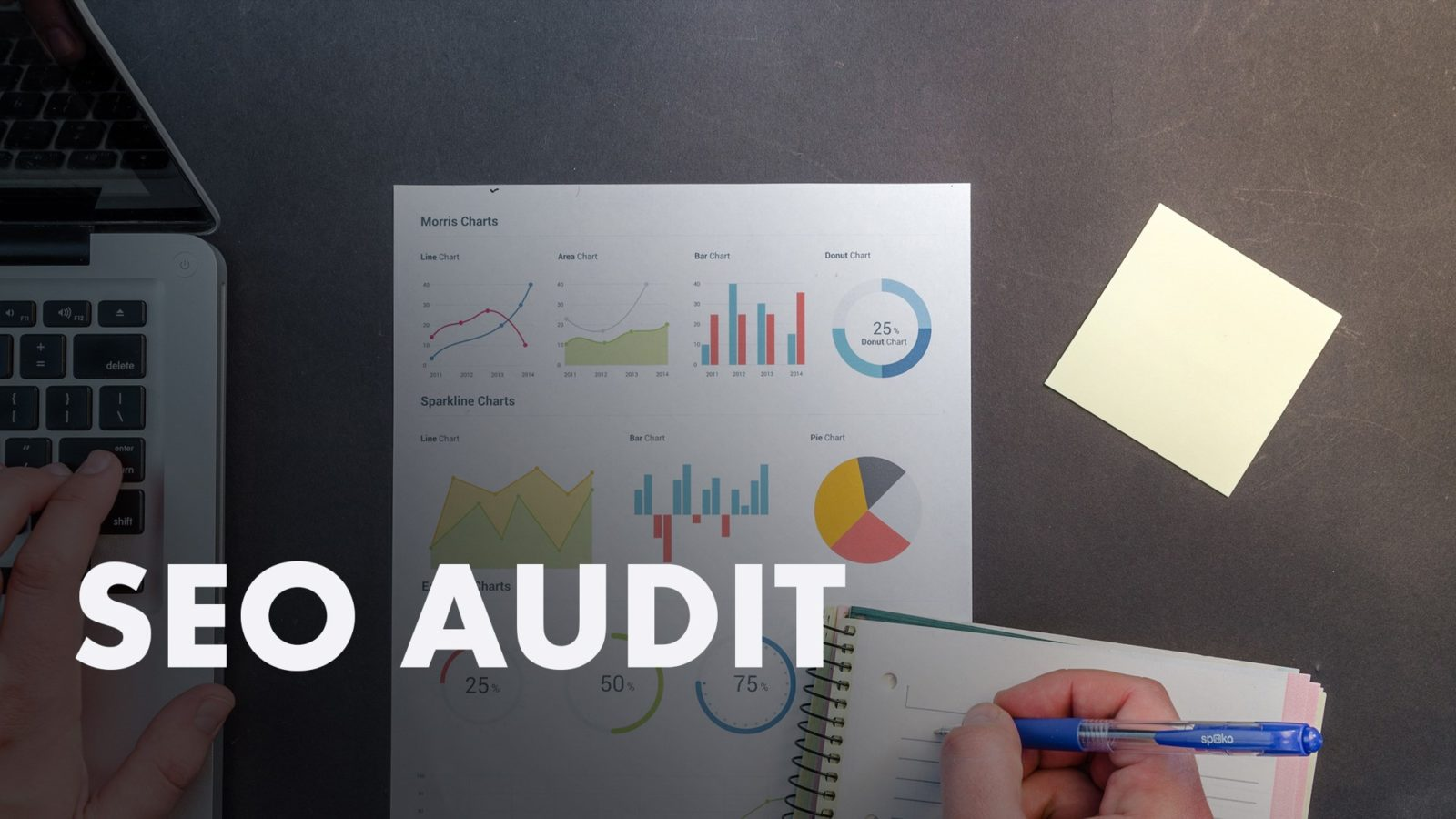 SEO Audit (photo of analytics dashboard graphs)