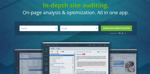 Website Auditor home page